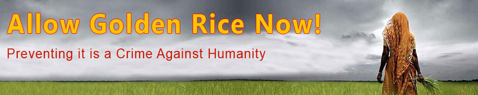 Allow Golden Rice Now!